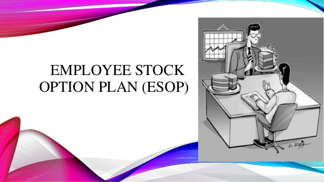 Employee Stock Option Plan for an Unlisted Company